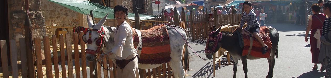 Paseos para niños en burross
